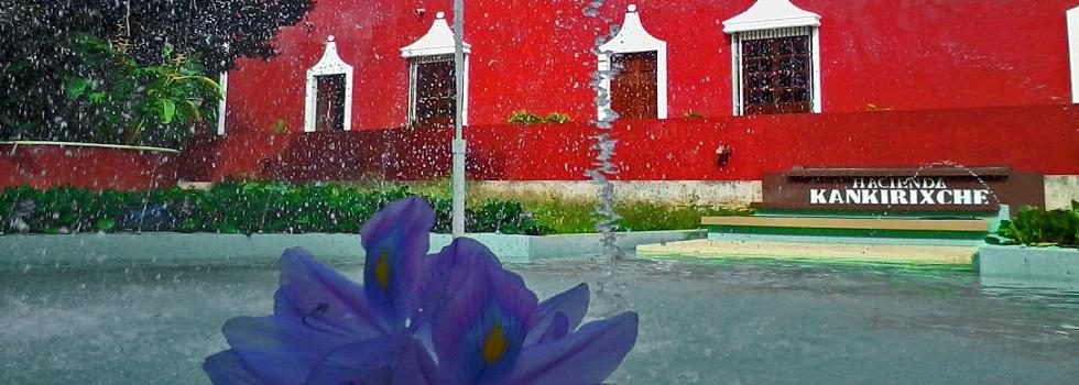 Bienvenidos Hacienda Nuestra Señora del Rosario Kankirixche